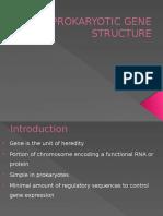 Unit 6 Prokaryotic Gene Structure