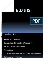 Unit 9 Meiosis