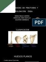 Fracturas y Consolidacion Maria Campos