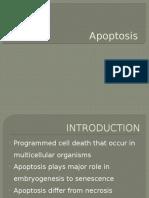 Apoptosis Cell Bio Unit 4