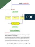 192696073-1-2-Nefropatias.pdf