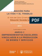 ANEXOE EMPRENDIMIENTOSESCOLARES final.pdf