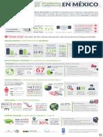 Infografia Indicadores Emprendimiento Mexico