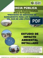 AUDIENCIA PÚBLICA PROVISUR2