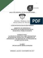 PAI AMAP ITD Evidencia Final