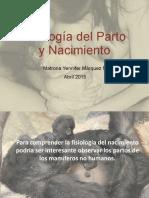 8. Fisiologia Del Parto