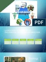 Ramas de la Biología.pptx