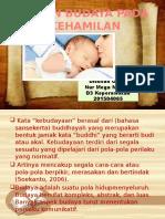 Peran Budaya Pada Kehamilan