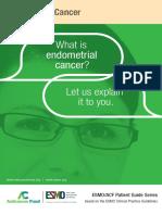 En Endometrial Cancer Guide for Patients