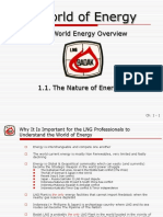 Chapter 1 - World Energy Overview