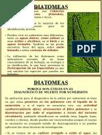 Diatomeas.odp