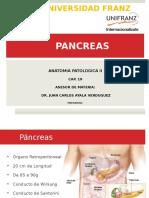 Cap 19 Pancreas