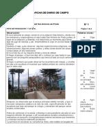 Diario de campo SAP