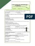 307500396-prueba-ciencias-7-microorganismo.docx