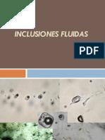3 1 Inclusiones Fluidas