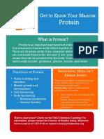 ymca protein handout  copy