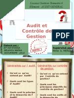 114241026-Audit-Et-Controle-de-Gestion.pptx