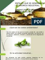 Costos Ambientales en La Industria