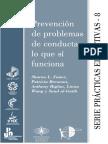 Prevención Problemas de Conducta