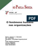 O Fenomeno Humano Nas Organizações