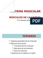 Clase 6_Sistema Muscular - Musculos de La Cabeza-1 (2)