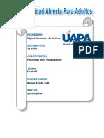 326894371-Tarea-1-Psicologia-de-La-Organizacion.doc