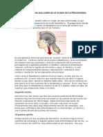 1 Teorías Científicas Que Explican El Origen de La Fibromialgia