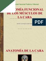 anatomiafuncionaldelosmusculosdelacara-140623164922-phpapp01