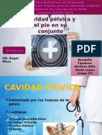 CAVIDAD PELVICA