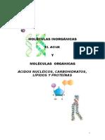 biomoléculas (1)