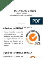 OHSAS 18001 - C. Vizcarra - Exposicion