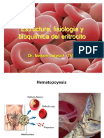 Clase 2 Estructura Fisiolog a y Bioqu Mica Del Eritrocito 2016