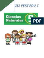 Síntesis Ciencias Naturales 5° I perido