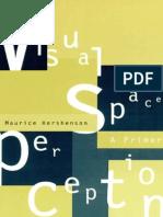 Visual Space Perception MIT