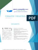 Formatos y Registros