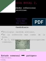 Patologia Bucal i