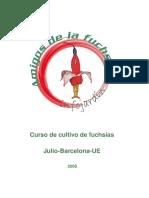 Amigos Del as Fuchsia