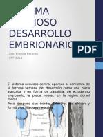 Desarrollo Embrionario SISTEMA NERVIOSO-1