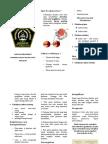 Pamflet Glaukoma.docx