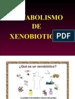 Xenobiticos Tema 1