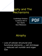 Atrophy and the Mechanisms-1
