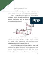 Tumbuh Kembang Mandibula Dan TMJ