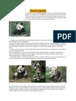 Referat Panda