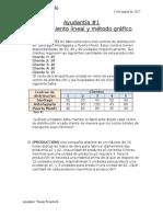 Ayudantía 1  Gestios de operaciones- Modelamiento y Solución Gráfica