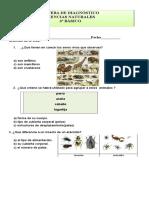 prueba diagnostico ciencias tercero.docx