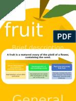 NS102 Fruits