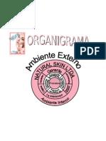 organigrama natural[1]