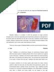 Case Study (DM)