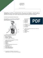 127540419 Ciencias Naturales Prueba de Diagnostico 2012 Docx