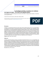 Identificación de fructooligosacáridos e inulinas en residuos de hojas de fique - Furcraea macrophylla Baker